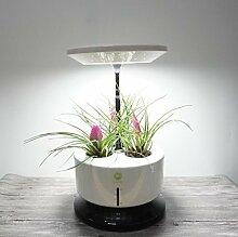 Mikro wachsen Licht Garten automatische Pflanze Wachstum Maschine intelligente Pflanzmaschine vergossen Soilless Anbau Anlage Kontrolle Leistung 28W Größe 35-40CM , white