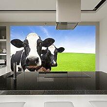 Milchkühe Wandbild Nutztiere Foto-Tapete Küche Kinderzimmer Wohnkultur Erhältlich in 8 Größen Klein Digital