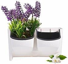 Mini-Blumenkasten für vertikale Aufhängung.