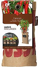 Mini-Garten BIO-Cayennepfeffer,1 Jute-Sack