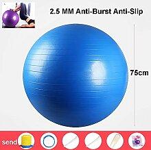 MLSJM 75Cm Exercise Ball Yoga Ball Chair
