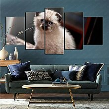 mmkow Wandbild 5-teiliges Set Tierkatze Bild Foto