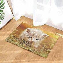 MMPTN Katzenliebhaber Dekor grau lustige Katze im