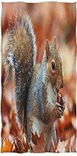 MNSRUU Handtuch mit Eichhörnchen,