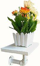 Mode-Regal XXGI Hängende Blumenregalregale