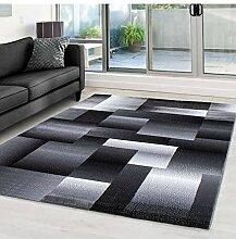 Moderner Designer Wohnzimmer Teppich Miami 6560