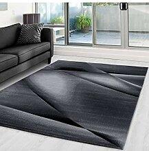 Moderner Designer Wohnzimmer Teppich Miami 6590