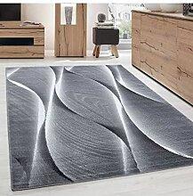Moderner Designer Wohnzimmer Teppich Parma 9310