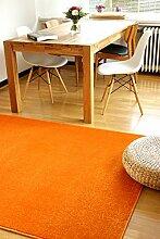 Moderner Teppich Kolibri orange 200x290cm -