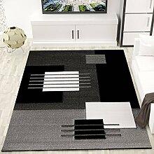 Moderner Teppich mit Konturenschnitt in Farbe Grau Weiss Schwarz Naturfreundlich und Pflegeleicht – VIMODA; Maße: 160x230 cm