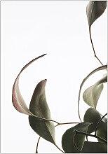 Moebe - Floating Leaves No. 8, A3