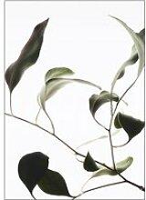 Moebe - Floating Leaves No. 9, A4