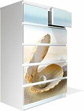 Möbel Aufkleber für IKEA Malm Kommode 80x123cm mit Motiv: Perlenmuschel