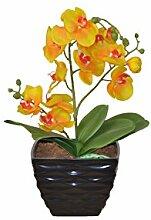 moebel direkt online Kunstblume Orchidee
