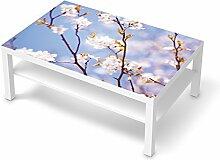 Möbeltattoo für IKEA Lack Tisch 118x78 cm |