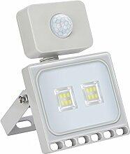 Molie Led Strahler mit Sensor Kaltlicht 10W 20W