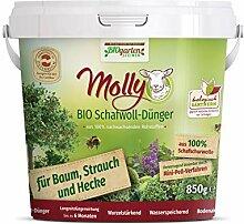 Molly Bio Schafwolldünger für Baum, Strauch und