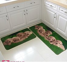 MoMo Bodenmatte/Fußmatte/absorbierende