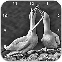 Monocrome, außergewöhnliche Vögel am Meer,
