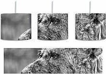 Monocrome, Hyäne im Seitenprofil inkl.
