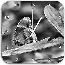 Monocrome, kleine bräunlicher Schmetterling,