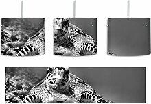 Monocrome, Schildkröte über Korallenriff inkl.