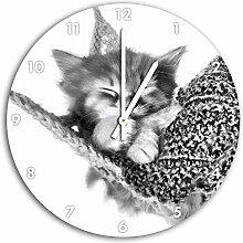 Monocrome, Schlafendes Katzenbaby in Hängematte,