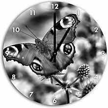 Monocrome, Schöner Schmetterling Pfauenauge,