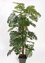Monstera deliciosa, Fensterblatt Kletterpflanze, 60 Blätter, Höhe ca. 190cm - Kunstbäume Kunstbaum künstliche Bäume Kunstpflanzen Kunstpalmen Dekopalmen