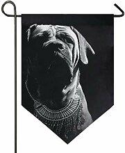 MONTOJ Bulldogge schwarzer Hintergrund Home Sweet