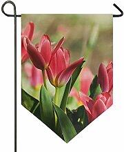 MONTOJ Schöne rosa Tulpe Home Sweet Home Garten