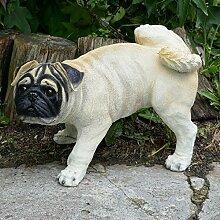 Mops Hund mit Bein hoch