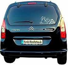 Mops verspielt Auto Aufkleber Scheibe Wohnmobil Wohnwagen Hunde Mops mit Koffer ATV010 (60x40cm, schwarz)