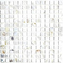 Mosaik Fliese Muschel perlmutt für WAND BAD WC