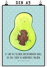 Mr. & Mrs. Panda Poster DIN A3 Avocado mit Kern - 100% handmade in Norddeutschland - Avocadokern, Bild, Wandposter, Wanddeko, Pflanze, Kern, Papier, Poster, Spruch Leben , Geschenk, Avokado, Avocado