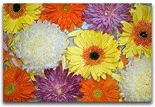 Mr.shaohua DIY D Diamant Mosaik Blumen Voller