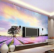MSCLY Fototapete Provence Lavendel Floral Bunte