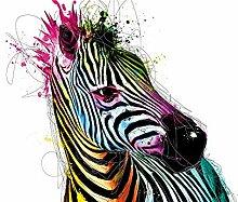 Muciano, Patrice Zebra Pop Foto-Tapete - Größe