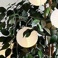 Multistore 2002 Lampionkette Weiß 20 LED-Lichter 10 Lampions 17m Partydekoration Lichterkette Gartendekoration