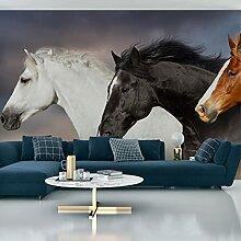 Muralo Fabelhafte Vlies Fototapete 416x254
