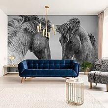 Muralo Fabelhafte Vlies Fototapete 90x60 Pferde