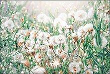 Muralo Fototapete Blumen 210 x 315 cm Vlies Tapete