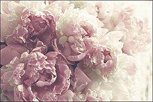 Muralo Fototapete Blumen 210x315 cm Vlies Tapete