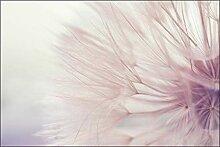 Muralo Fototapete Blumen 90 x 135 cm Vlies Tapete
