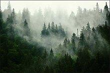 Muralo Fototapete Wald im Nebel 150 x 225 cm Vlies
