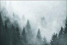 Muralo Fototapete Wald im Nebel 180 x 270 cm Vlies