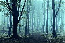 Muralo Vlies Fototapete 270x180 Wald im Nebel