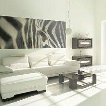 murando Deko Panel XXL 227x100 cm Vlies Tapete