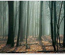 murando - Fototapete 200x154 cm - Vlies Tapete -
