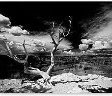 murando - Fototapete 300x231 cm - Vlies Tapete -